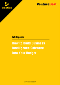 How to Build Business Intelligence Software into Your Budget
