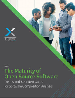 The Maturity of Open-Source Software: Trends and Best Next Steps for Software Composition Analysis
