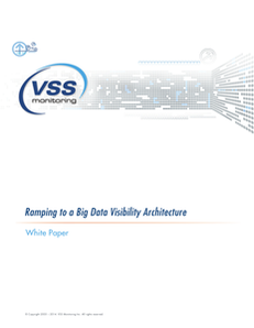 Ramping Your Organization to a Big Data Visibility Architecture