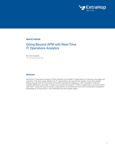 Going Beyond APM with Real-Time IT Operations Analytics
