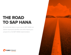 The Road to SAP HANA