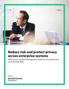 Reduce Risk and Protect Privacy Across Enterprise Systems