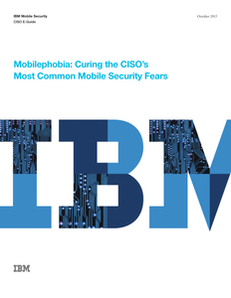 Mobilephobia: Curing the CISO's Most Common Mobile Security Fears