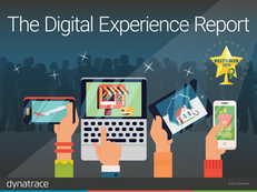 Best of the Web: The 2016 Digital Performance Report