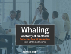 Whaling: Anatomy of an Attack