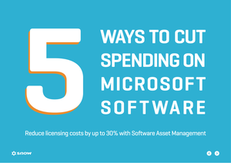 5 ways to cut spending on Microsoft software