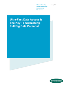 Ultra-Fast Data Access Is The Key To Unleashing Full Big Data Potential