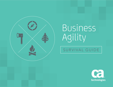 Business Agility Survival Guide
