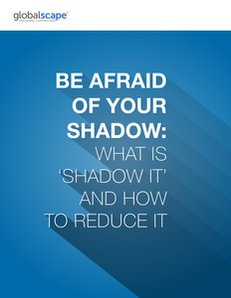 Be Afraid of Your Shadow: What Is Shadow IT and How to Reduce It