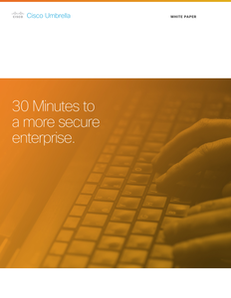 Why a DNS-layer matters: 30 minutes to a more secure enterprise