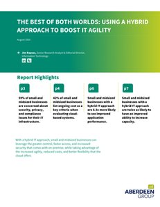 The Best of Both Worlds: Using a Hybrid Approach to Boost IT Agility