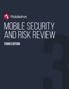 Mobile Security and Risk Review