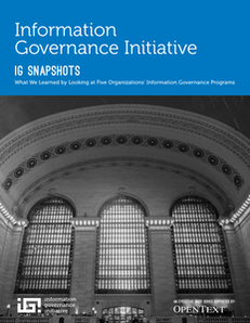 IG Snapshots: What We Learned by Looking at Five Organizations' Information Governance Programs