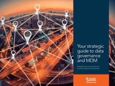 Your Strategic Guide to Governance and MDM