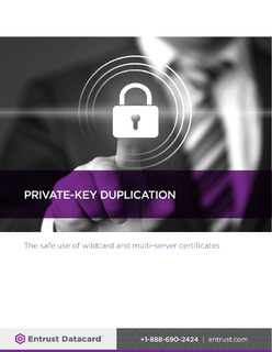 Private-Key Duplication: The Safe Use of Wildcard and Multi-Server Certificates
