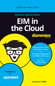 EIM in the Cloud for Dummies