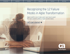 Recognizing the 12 Failure Modes in Agile Transformation