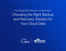 Choosing the Right Backup and Recovery Solution for Your Cloud Data