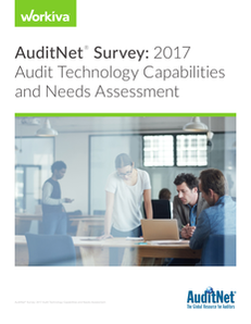The results are in: 2017 AuditNet® Survey