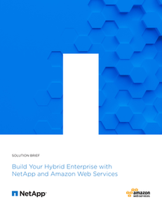 Build Your Hybrid Enterprise with NetApp and Amazon Web Services