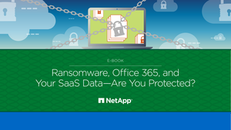 Ransomeware: Is your Saas Data Protected?