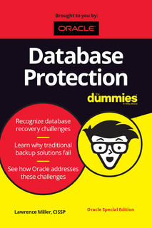 Data Protection for Dummies