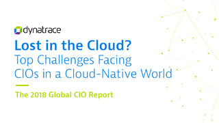 Lost in the Cloud? Top Challenges Facing CIOs in a Cloud-Native World