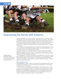 Empowering the Masses with Analytics