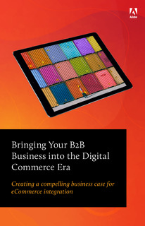 Guiding Your B2B Business into the Digital Commerce Era
