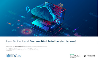 How To Pivot and Become Nimble in the Next Normal
