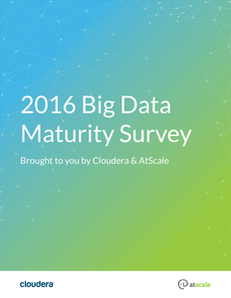 Big Data Maturity Survey, 2016