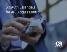 5 OAuth Essentials for API Access Control