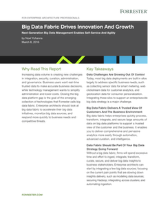 Big Data Fabric Drives Innovation and Growth