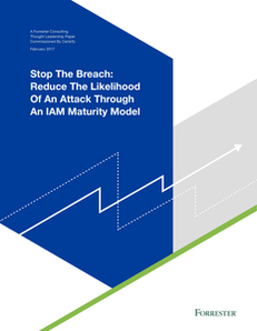 Stop the Breach: Reduce the Likelihood of an Attack Through an IAM Maturity Model