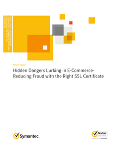 Hidden Dangers Lurking in E-Commerce – Reducing Fraud with the Right SSL Certificate