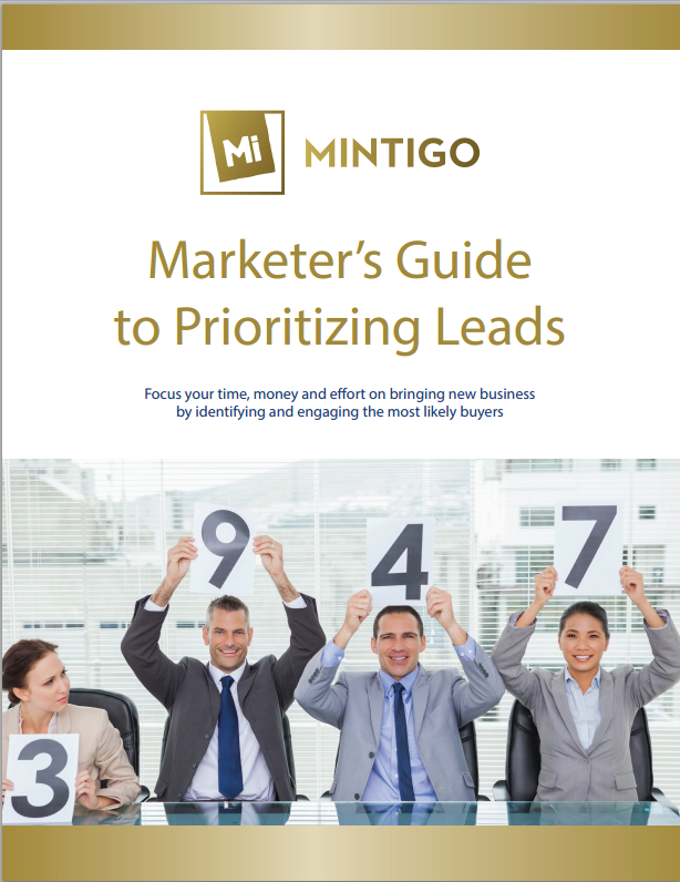 The Marketer's Guide to Prioritizing Leads