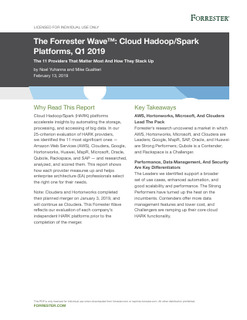 The Forrester Wave™: Cloud Hadoop/Spark Platforms, Q1 2019