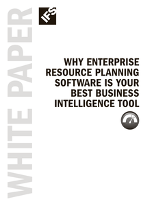 Why ERP Software is Your Best Business Intelligence Tool
