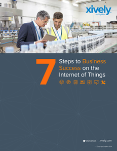 7 Steps to Business Success on the Internet of Things