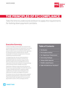 The Principles of PCI Compliance