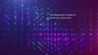 The Beginner's Guide to Anomaly Detection