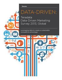 Teradata Data-Driven Marketing Survey 2013 Infographic
