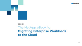Migrating Enterprise Workloads to the Cloud