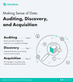 Making Sense of Data: Auditing, Discovery, and Acquisition