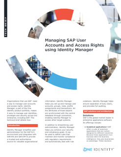 Protected: Managing SAP User Accounts and Access Rights using Identity Manager