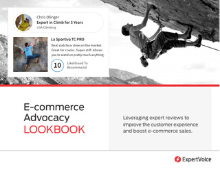 E-Commerce Advocacy Lookbook